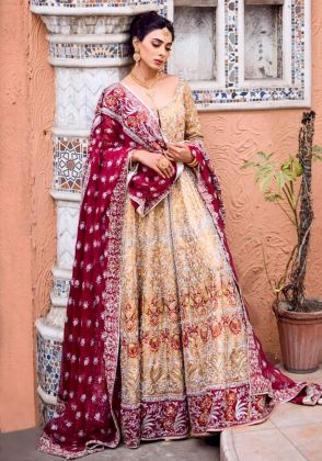 Tissue Anarkali Frock  by Ivy Couture